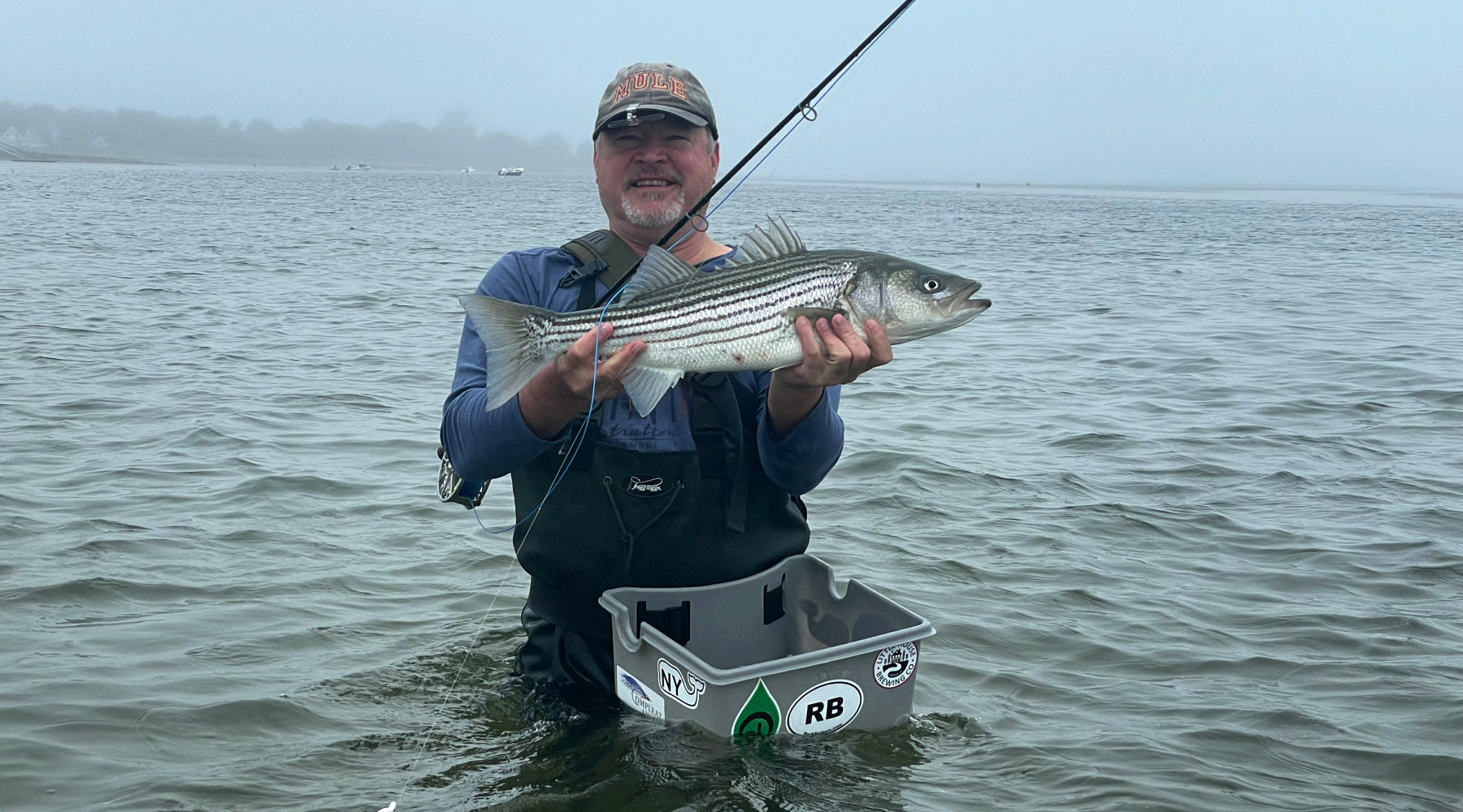Connecticut Striped Bass Fly Fishing