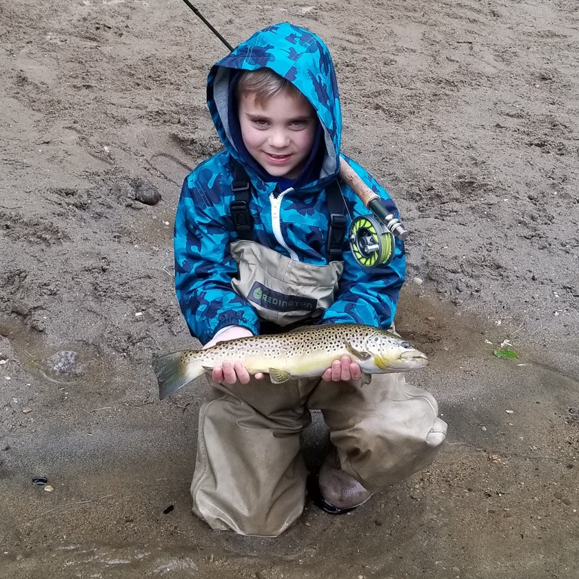 Kid Brown Trout on fly