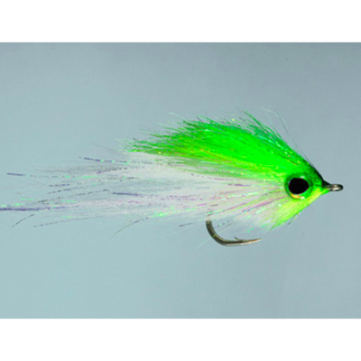 Rainy's Hamilton's Bush Pig Fly