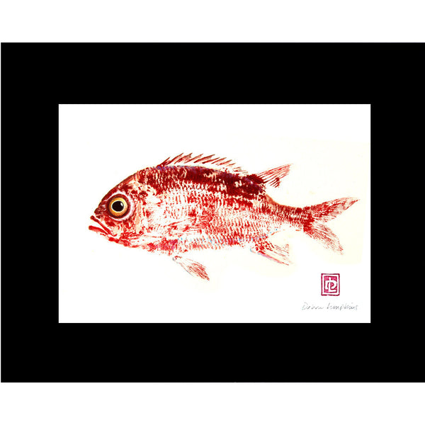 ʻalaʻihi Fish Print - Hawaii Made