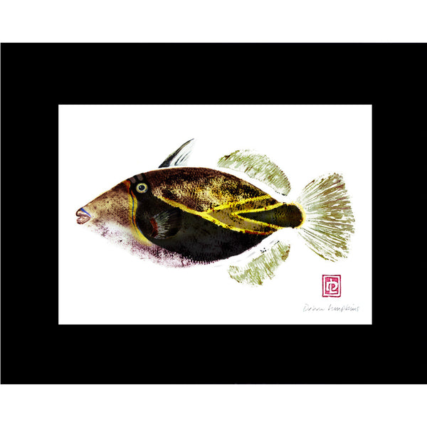 Humuhumu Matted Fish Print - Hawaii Made