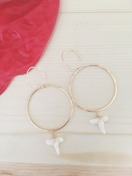 14k gold Shark tooth Hoop earrings