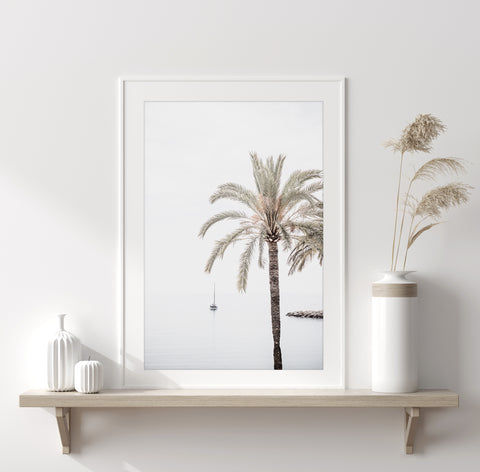 Palm Tree No 7 - Fine art print by Cattie Coyle Photography