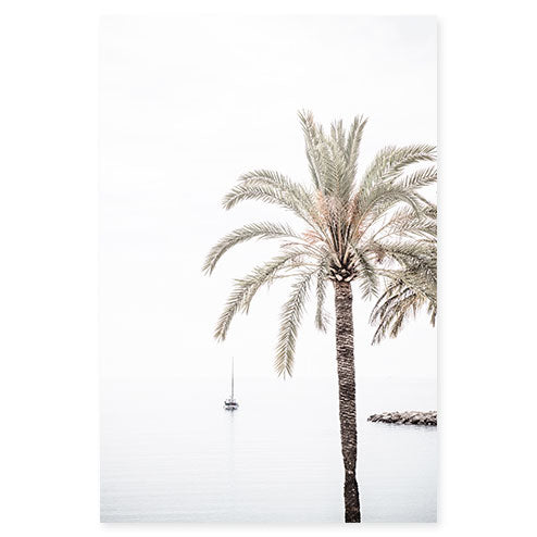 Palm Tree No 7 - Minimalist fine art print by Cattie Coyle Photography