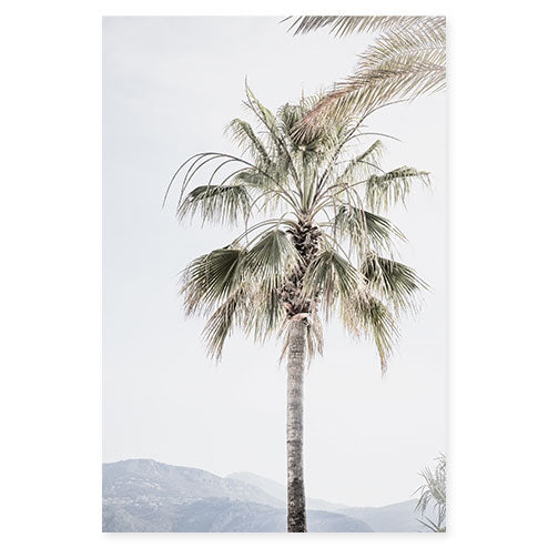 Palm Tree No. 8