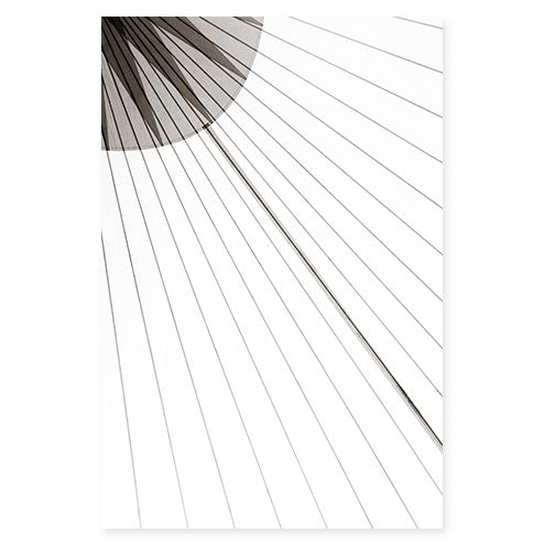 Sail No. 13 - Large minimalist black and white sail photography art print by Cattie Coyle