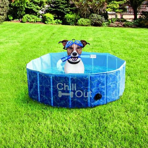KEEP YOUR DOG COOL