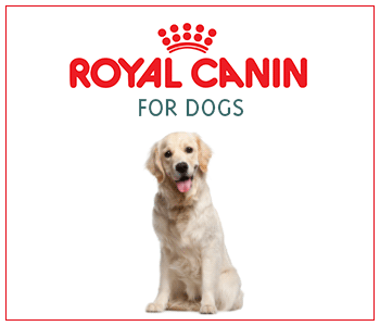 ROYAL CANIN DOGS