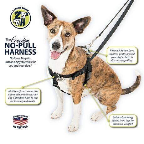 2 Hounds Design Raspberry Freedom No-Pull Harness And Leash - The Happy Dolphin Pets