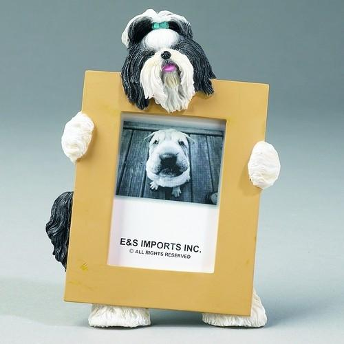 Shih Tzu Black & White longhair - Small Frame - The Happy Dolphin Pets