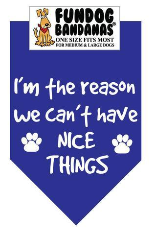 I AM The Reason We Can't Have Nice Things - Royal Blue Bandana - The Happy Dolphin Pets