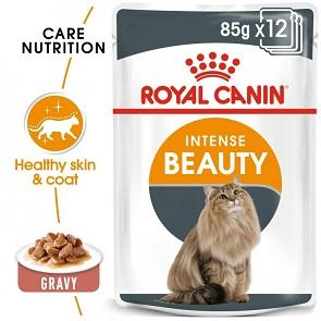 Royal Canin Intense Beauty In Gravy Wet Cat Food - The Happy Dolphin Pets