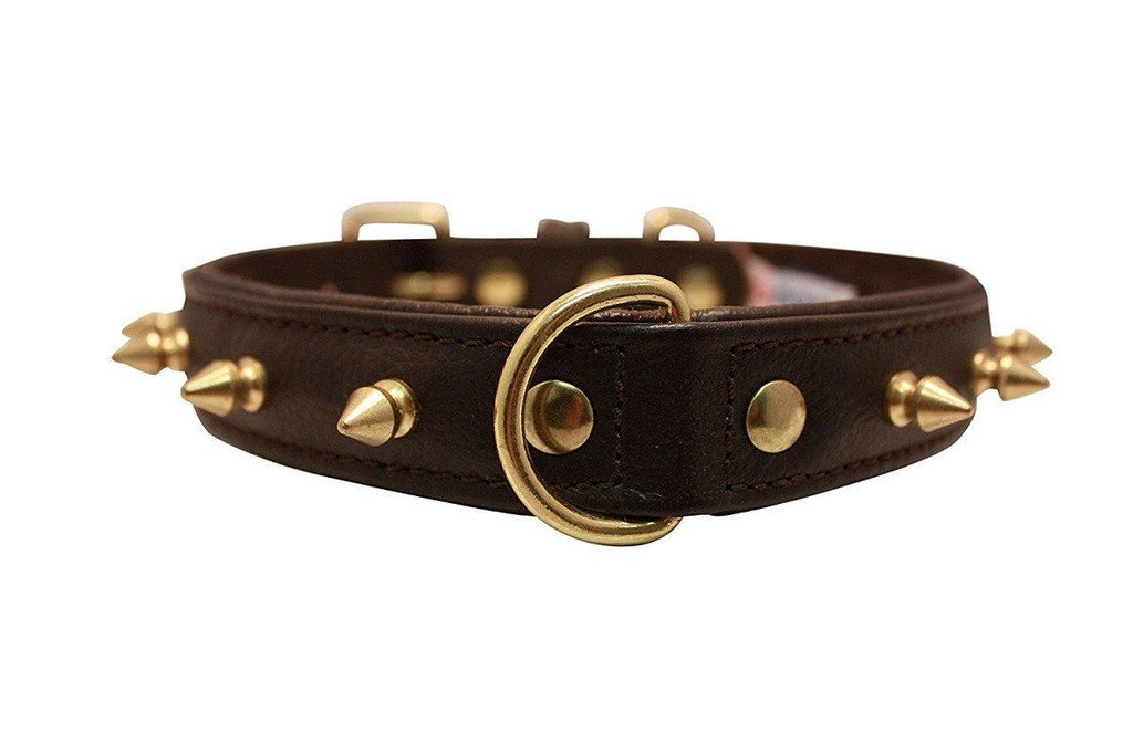 Genuine Leather Rotterdam Brown Single Line Spiked Collar - The Happy Dolphin Pets