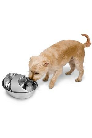 Pioneer Pet Stainless Steel Fountain Raindrop Style 96oz (2.8 L) - The Happy Dolphin Pets