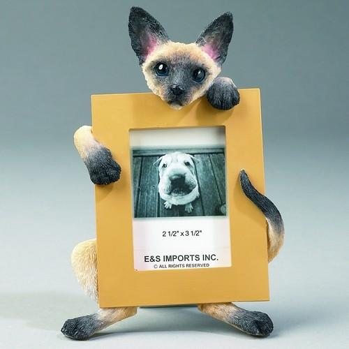 Siamese Cat - Small Frame - The Happy Dolphin Pets