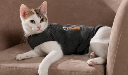 THUNDERSHIRT CAT GREY for cats anxiety & stress - The Happy Dolphin Pets