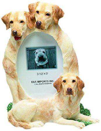 Yellow Lab Large Frame - The Happy Dolphin Pets