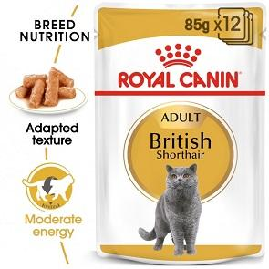 ROYAL CANIN WET FOOD FELINE BREED NUTRITION BRITISH SHORTHAIR