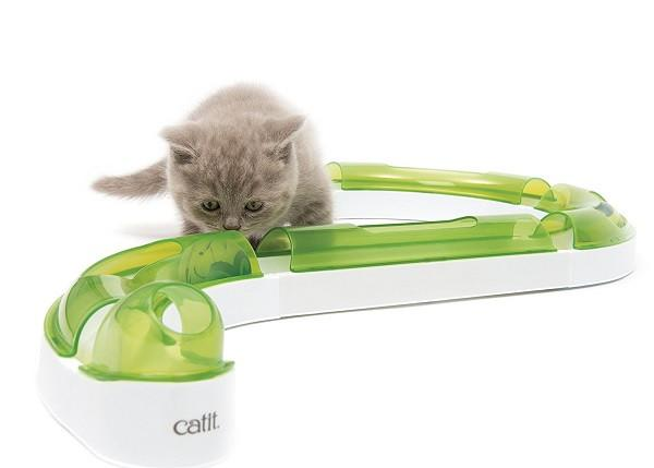 Catit Senses PLAY CIRCUIT - The Happy Dolphin Pets