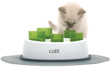 Digger Interactive Feeder from Catit - The Happy Dolphin Pets