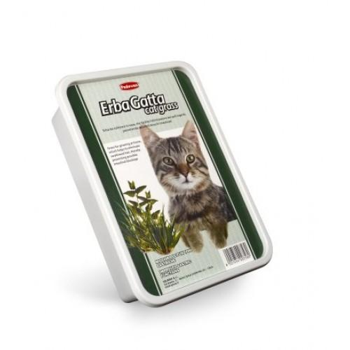 ERBAGATTO Cat Grass - The Happy Dolphin Pets