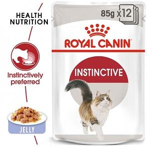 Royal Canin Jelly Instinctive For Adult Cats - Dubai - UAE