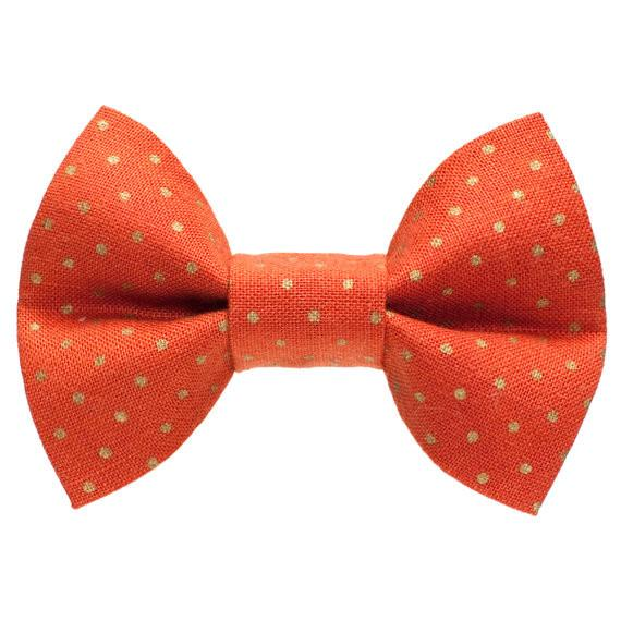 The Little Bit Spicy Bow Tie For Medium to Large Dogs - Halloween Collection - The Happy Dolphin Pets