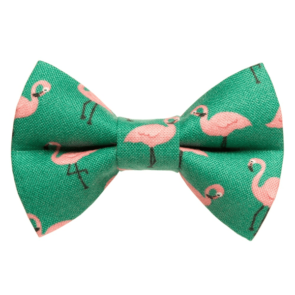 The Next Stop, Miami - Limited Edition Bow Tie for cats & small dogs - The Happy Dolphin Pets