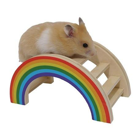 Rainbow Bridge for Hamster - The Happy Dolphin Pets