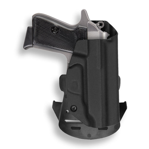 Walther PPK/S .380 ACP OWB Holster