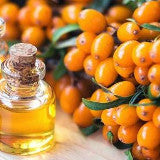 Sea Buckthorn Oil Plant