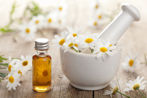chamomile flower in a bowl next to a bottle of oil