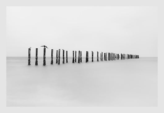 The Forgotten Pier II