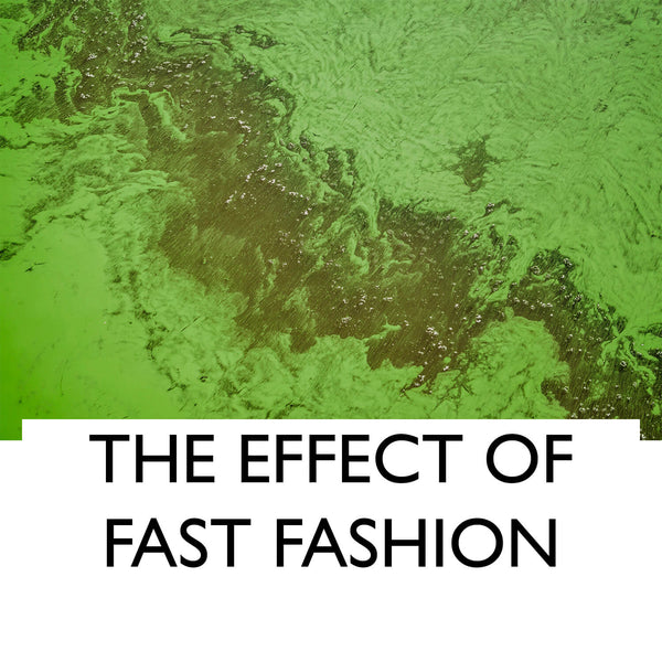 The effect of fast fashion