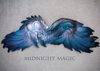 Midnight Magic Kelpie Silicone Top