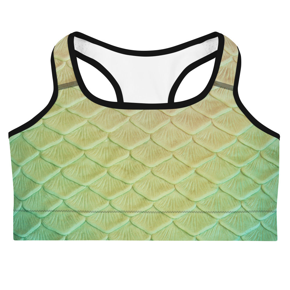 Loch Ness Sports bra