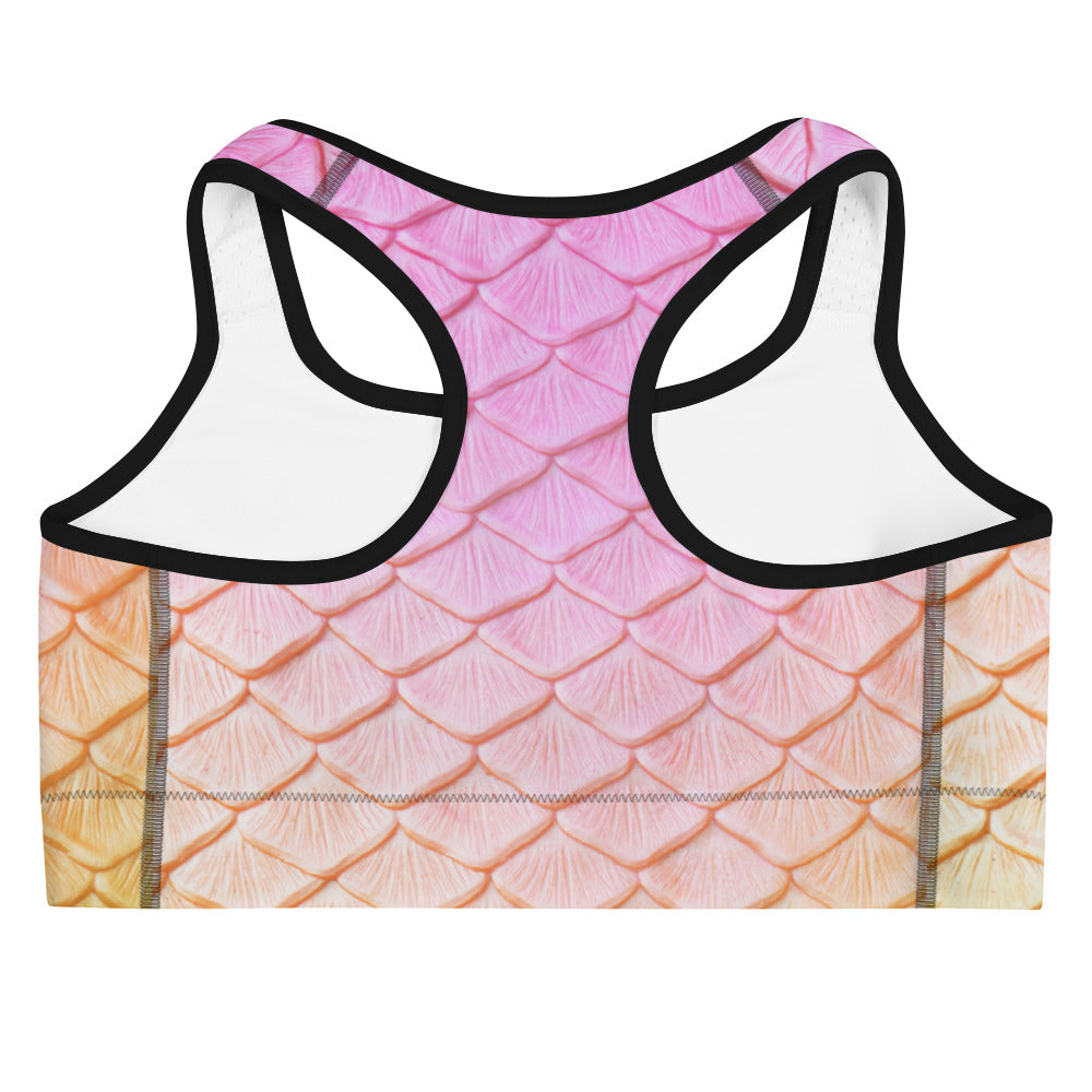 Rainbow Fairytail Sports bra