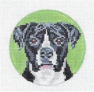 "Round~ Pit Bull B&W Dog 3"" handpainted Needlepoint Canvas by Needle Crossings"