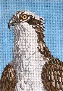 "Canvas~Osprey ""Fish Eagle"" Bird handpainted 13 mesh Needlepoint Canvas ~by Needle Crossings"