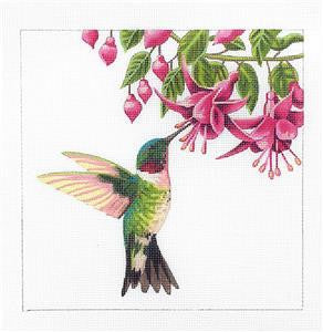 Canvas~Ruby Throat Hummingbird HP Npt Canvas by LIZ~S. Roberts