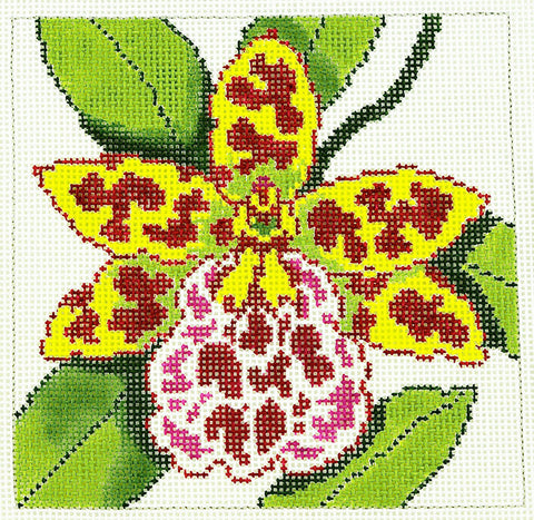 Canvas Floral~Wildcat Orchid handpainted Needlepoint Canvas