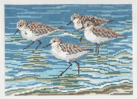 Canvas~Four Sanderlings & Beach 13M handpainted Needlepoint Canvas~by Needle Crossings