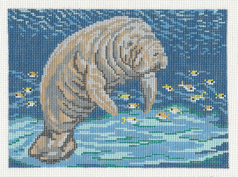 Canvas~Florida Manatee handpainted Needlepoint Canvas~by Needle Crossings
