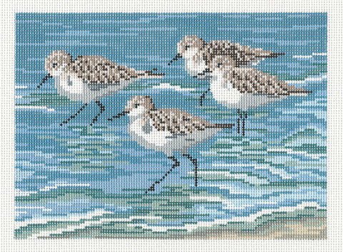 Canvas~Four Sanderlings & Beach 18M handpainted Needlepoint Canvas~by Needle Crossings