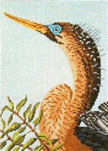 Canvas~Elegant Anhinga Shore Bird handpainted Needlepoint Canvas~by Needle Crossings