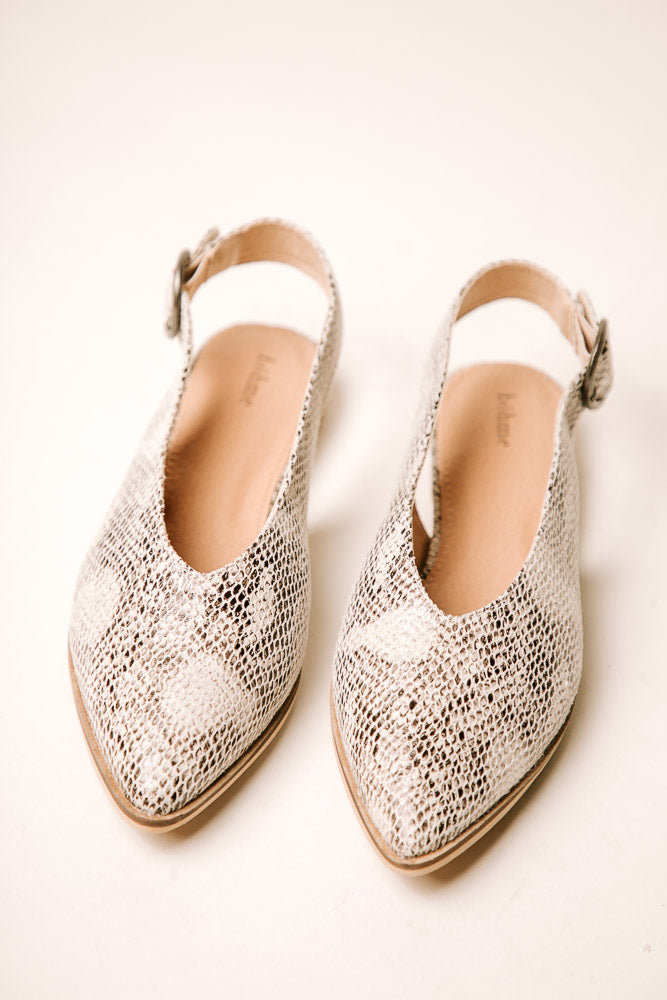 Delta Pointed Flats in Snake Print - FINAL SALE