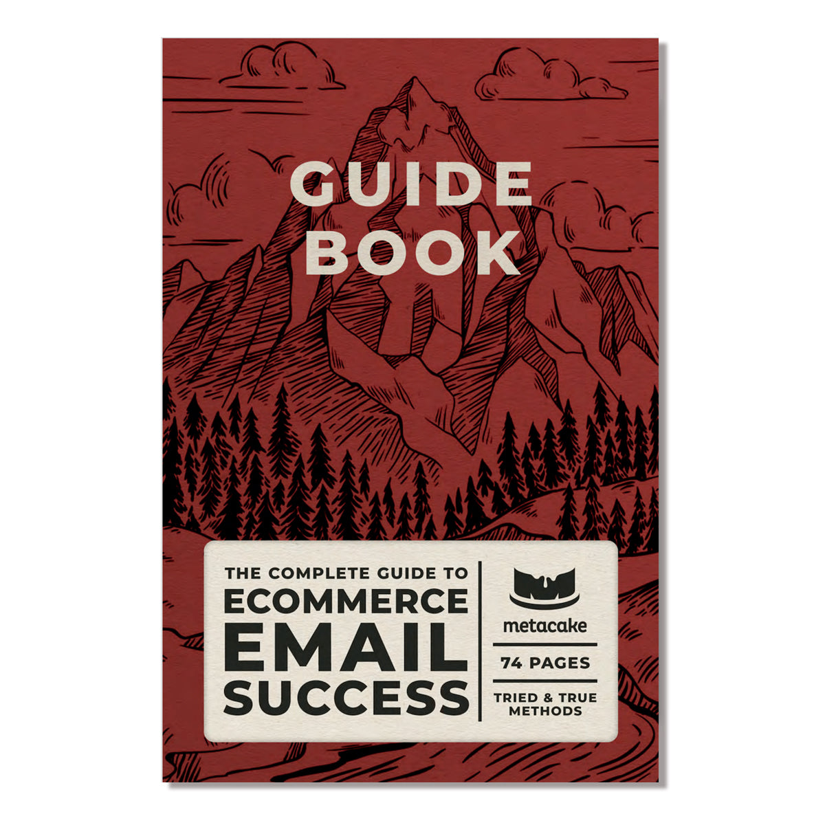 The Ultimate Guide to Ecommerce Email Success [Digital PDF]