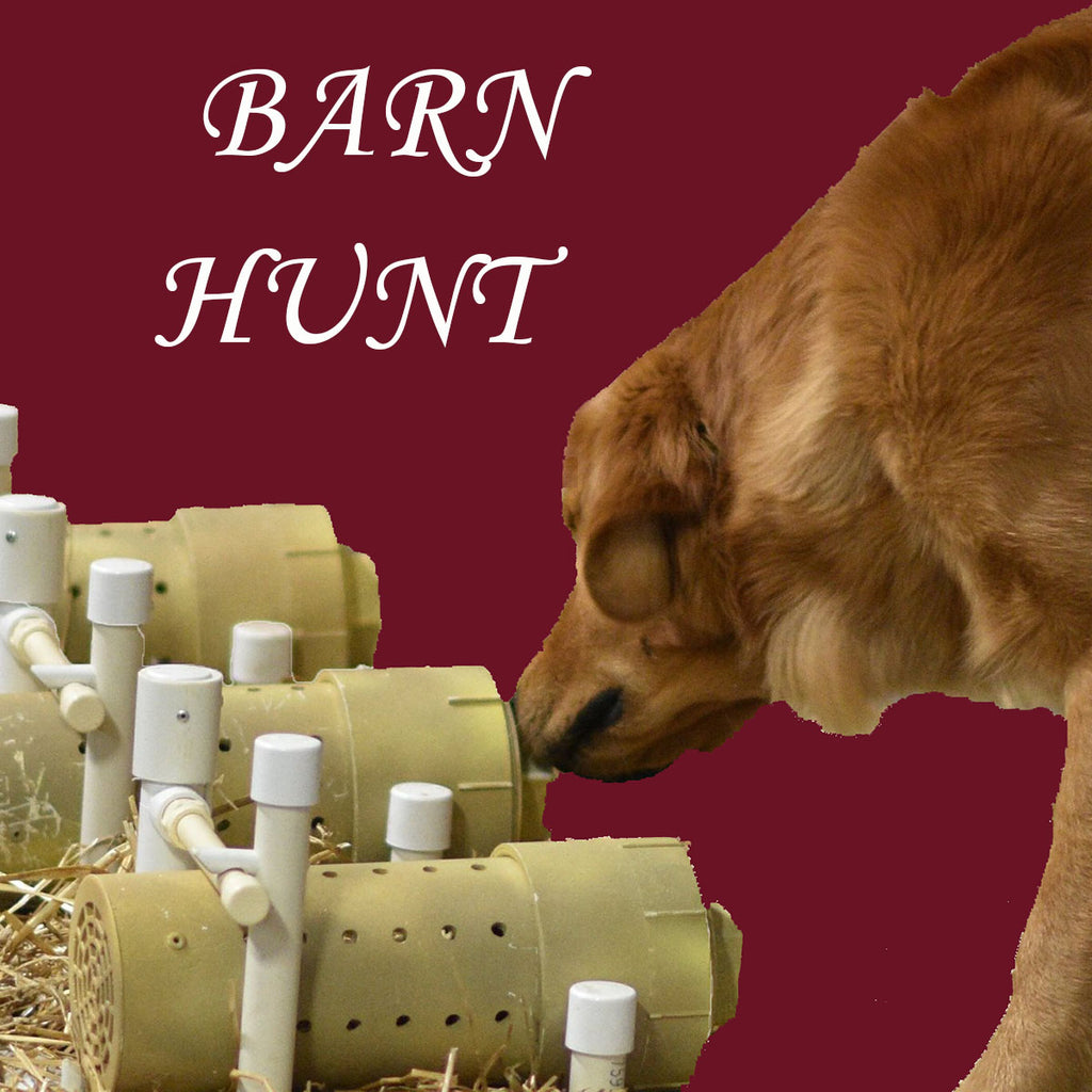 Register for Barn Hunt
