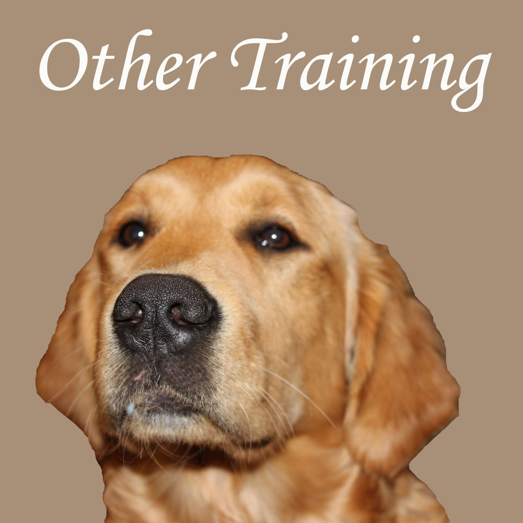 Register for Other Training