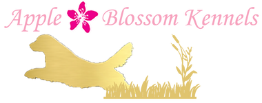 Apple Blossom Kennels & County Clips Pet Grooming